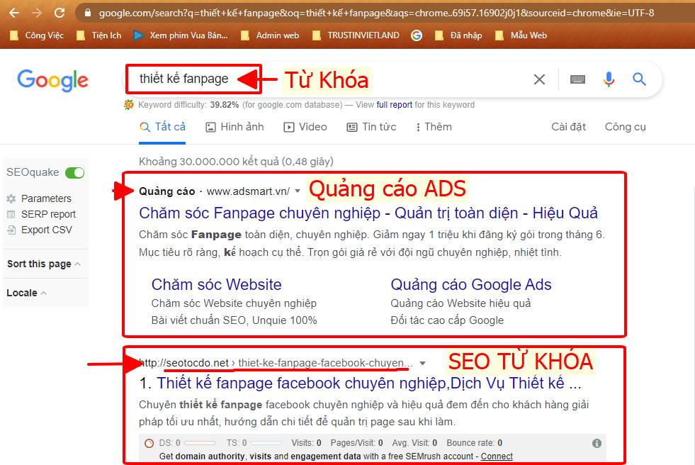 seo-top-google